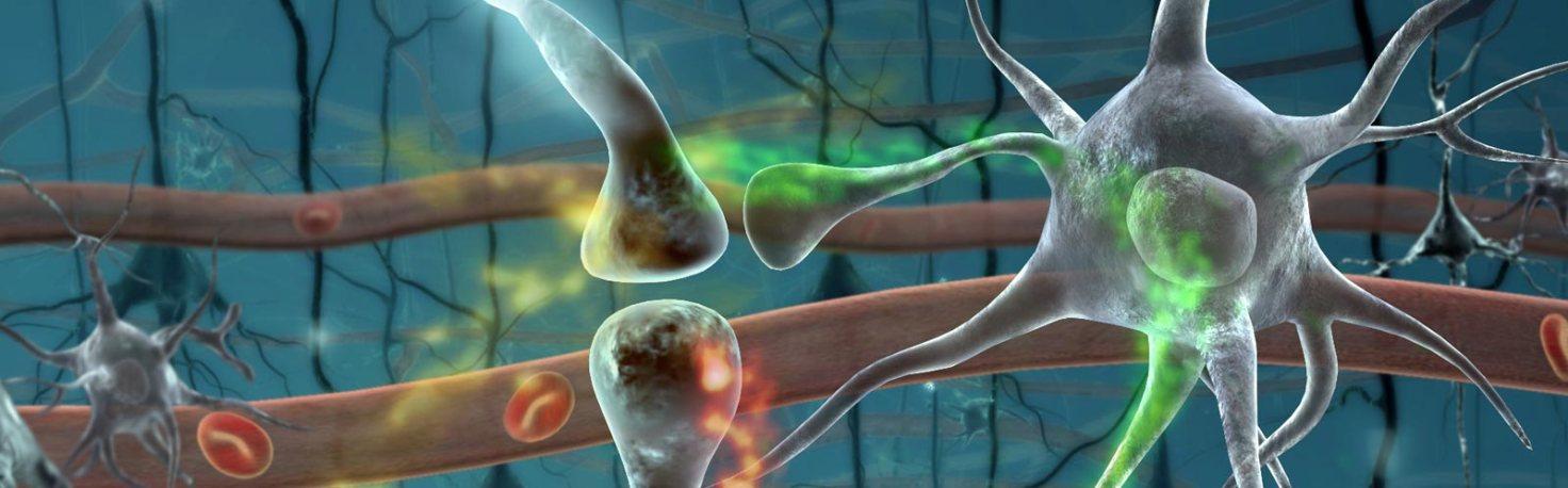 Стволовые клетки лечение простатита имбирь от аденому и простатита